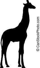 插圖, 矢量, 黑色, 黑色半面畫像, giraffe.