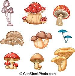 插圖, 蘑菇, 彙整