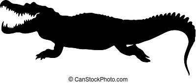 插圖, 被隔离, 矢量, crockodile., 黑色半面畫像, 黑色