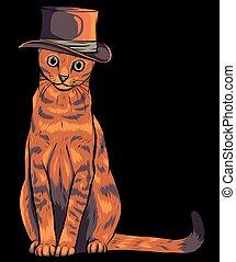 插圖, 貓, 帽子, 矢量