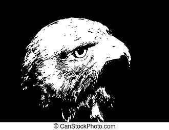 插圖, silhouette., 矢量, 黑色的鷹, 卡通