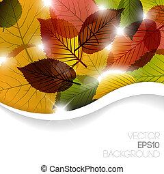 摘要, 背景, 秋天, 植物