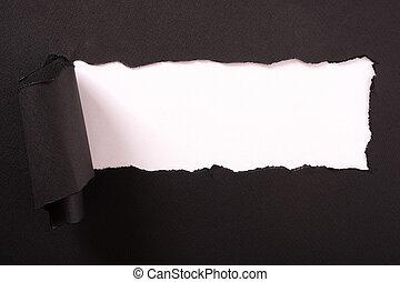 撕破, 邊緣, 紙, 黑色的背景, 剝去, 白色, 捲曲