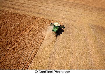 收穫, 小扁豆, 空中