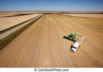 收穫, 空中