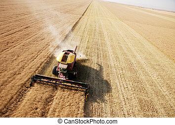 收穫, 領域, 空中的觀點