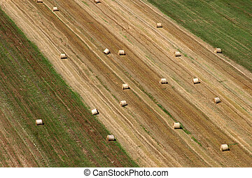 收穫, 領域, 空中, 夏季, 看法