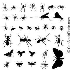 昆虫, 黑色半面畫像, 彙整