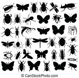 昆虫, colour., 插圖, 黑色半面畫像, 矢量, 黑色