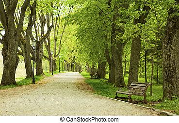 春天, 公園長凳
