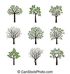 春天, 矢量, illustration., 彙整, 樹。