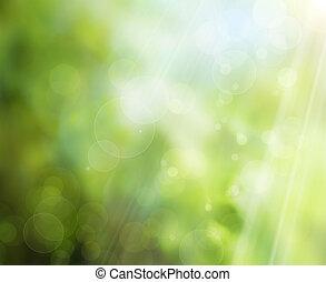 春天, 背景, 自然, 摘要