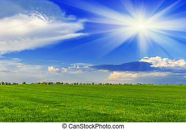春天, 陽光充足的日