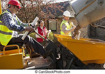 是, 工人, 組織者, 建設, 女性, 觀看, 男性