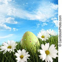 更東的草, 蛋, 雛菊
