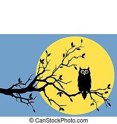 月亮, 貓頭鷹, 矢量