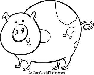 有斑點, 著色書, 豬