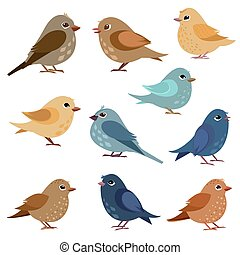 有趣, 設計, 鳥, 彙整, 你
