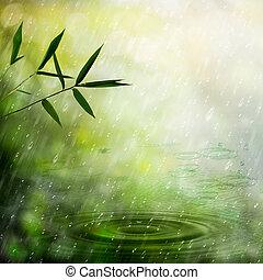 有霧, 自然, 摘要, 背景, 雨, forest., 竹子