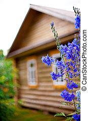 木制, 國家, 前面花園, 房子