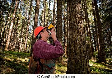 林務員, 西北, 太平洋, 森林