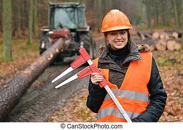 林業, 工人