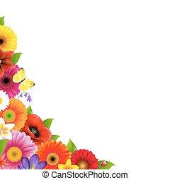 框架, 花