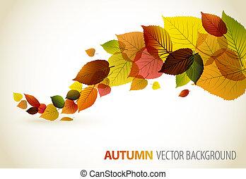 植物, 摘要, 背景, 秋天