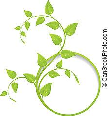 植物, 框架, 綠色