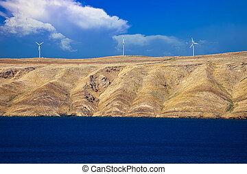 植物, 石頭, 力量, 島, pag, 沙漠, 風, 看法