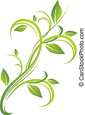 植物, 綠色, 設計