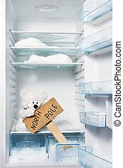 極地, 北方, 徵候。, 全球, 熊, 桿, 冰箱, 問題, 變暖和