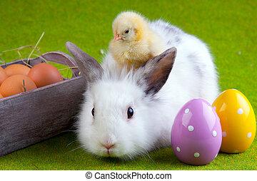 概念, 復活節