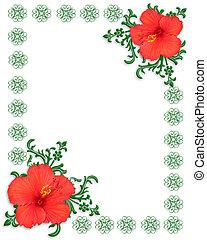 樣板, 芙蓉屬的植物, 花卉疆界
