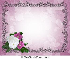 樣板, 荔枝螺, 花卉疆界