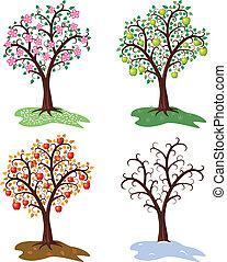 樹, 季節, 集合, 矢量, 四, 蘋果