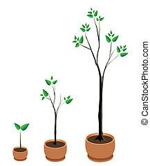 樹, 矢量, 成長