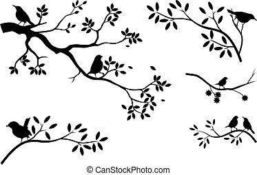 樹, 黑色半面畫像, 彙整