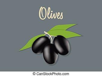 橄欖, 矢量, 黑色, 插圖