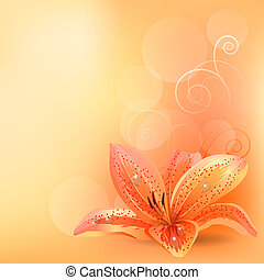 橙, 彩色蜡筆, 百合花, 背景, 光