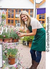 檢查, 花園中心, 植物, 工作的婦女