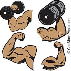 武器, weightlifter