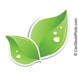 水, 綠色, 矢量, 葉子, droplets.
