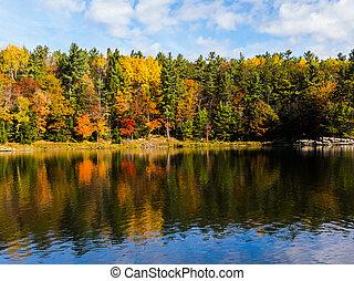 水, 風景, 秋天, 顏色, 反映