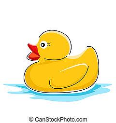 水, 鴨子