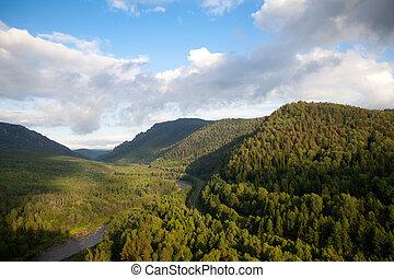 河, 空中, 森林, 看法
