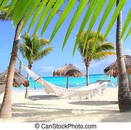 海灘, 棕櫚, 吊床, 加勒比海, 樹