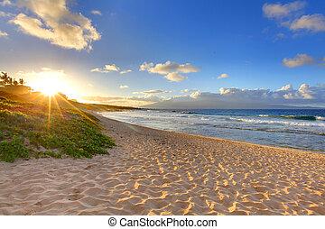 海灘, oneloa, 夏威夷, 熱帶, 傍晚海灘, maui
