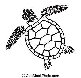 海龜, 圖表, 矢量, 海, 插圖