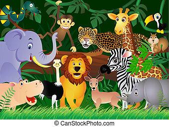 漂亮, 叢林, 動物, 卡通